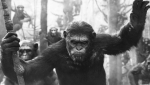 DawnOfThePlanetOfTheApes_VisualEffects-shaded